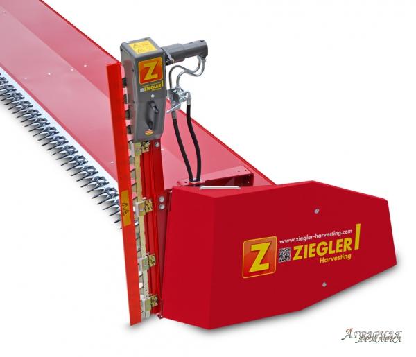 Рапсовый Стол Зиглер 9м
