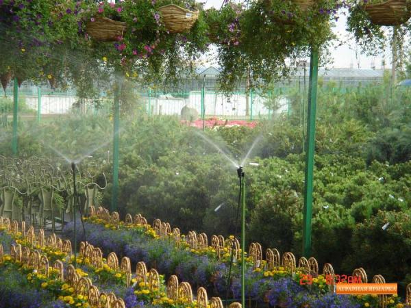 Системы полива карты продаж растений.