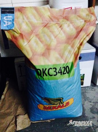 Продам семена кукурузы Monsanto