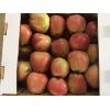Яблоки Голден Делишес,   Гренни Смит,   Айдаред,   Ред Чив оптом.
