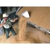экспорт пшеница протеин 10, 5%