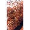 Морковь мытая,        овощи от производителя