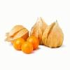 Физалис Премиум,    ягоды сушеные,    25 кг