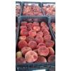 Фрукты и овощи из Испании и Марокко,   лучшие цены!