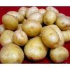 Картофель урожая 2019 г от производителя