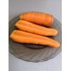 Морковь сорт АБАКО F1