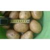 Картофель в Москве по 11р,  мелким и крупным оптом.