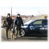 Охранапредприятий и организаций