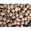 Продам грецкие орехи,  урожай 2017 года.