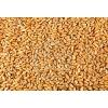 Пшеница 3,   4 и 5 класс продаем франко-вагон FCA