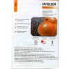 "Семена лука ""Халцедон"", Глобус  и др.    сорта от молдавского производителя."