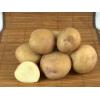 Семенной картофель СИНЕГЛАЗКА (элита,   суперэлита)   от СеДеК