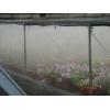 Системы туманообразования в теплицах.