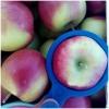 Яблоки оптом от производителя 41,  50 руб.  /кг