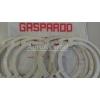 Уплотнитель Gaspardo диска аппарата MT G19002620 Прокладка высевающего аппарата Gaspardo G19002620 в Днепропетровске - фото ориг